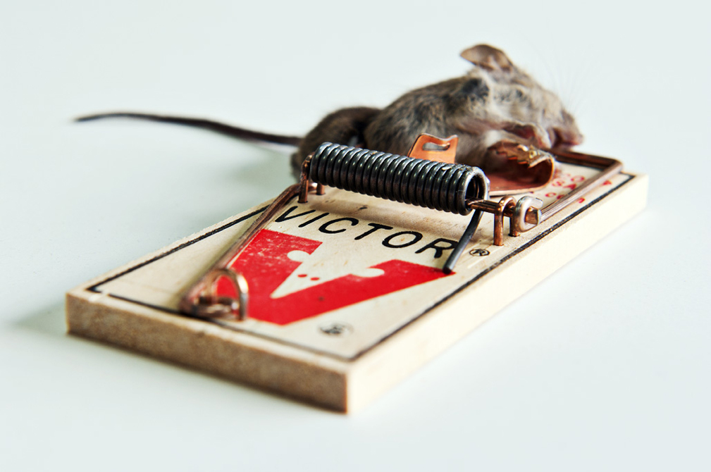 Victor Mouse Traps